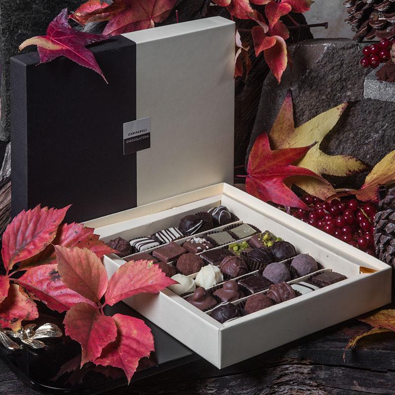 Cioccolatini misti Caniparoli in scatola (30 pz)